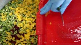 手倒切好的芒果入有不同的果子片断的一个罐在食物的 股票视频