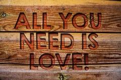 手写文本您需要的全部是诱导的爱 意味深刻的喜爱的概念需要欣赏言情木背景vi 免版税图库摄影