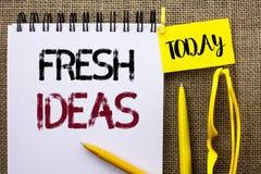 手写文本新主意 意味创造性的视觉想法的想象力概念战略的概念写在t的笔记本书 免版税图库摄影