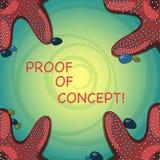 手写文本概念证明 意味证据的概念典型地获得从实验或项目海星照片 皇族释放例证