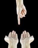 手和手指 免版税库存照片