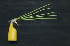 手喷雾器瓶和芳香棍子香火 免版税库存图片