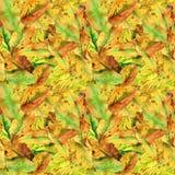 手图画水彩黄色秋叶样式 免版税库存图片