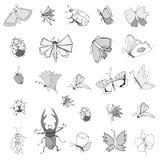 手图画昆虫的汇集 免版税库存图片