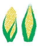 手图画玉米,玉米, 免版税库存照片