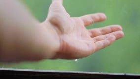 手在雨中,在大雨期间 股票录像