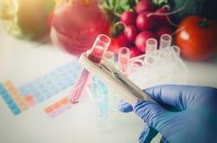 手套作为试管的分析家 食物基因上修改了 免版税库存照片