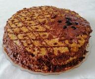 手工制造巧克力蛋糕装饰用莓果 免版税库存图片
