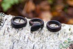 手工制造木圆环的珠宝 免版税库存图片