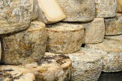 手工制造的干酪 库存图片