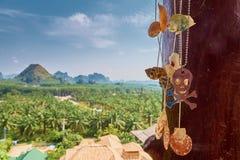 手工制造贝壳项链和一块不锈钢人的头骨,在密林、山和蓝天背景  库存照片