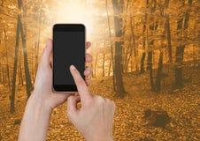 手感人的电话在森林里 免版税图库摄影