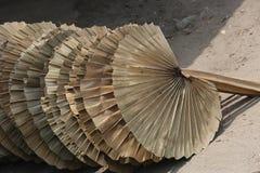 手扶的爱好者叶子棕榈叶切口 库存照片