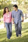 手拉手走在公园的亚洲夫妇 免版税库存图片