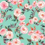 手拉的与嫩桃红色玫瑰的水彩花卉无缝的样式在浅兰的背景 免版税库存照片