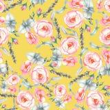 手拉的与嫩桃红色玫瑰的水彩花卉无缝的样式在黄色背景 免版税库存图片