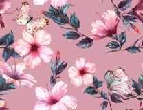 手拉的与嫩白色和桃红色木槿花和蝴蝶的水彩花卉无缝的样式 皇族释放例证