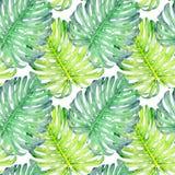 手拉的与热带叶子的水彩无缝的样式 向量例证