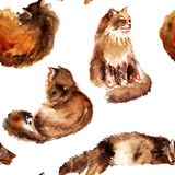 手拉的与颜色毛皮猫的水彩无缝的样式在白色背景 免版税库存图片