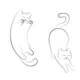手拉的两只猫 一只猫在一种嬉戏的心情,腹部,另一猫舒展 免版税库存图片