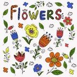手拉的五颜六色的花 免版税图库摄影