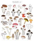 手拉的五颜六色的蘑菇的汇集 设置被隔绝的可食 库存例证