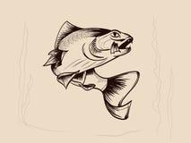 ?? 手拉的传染媒介鱼 剪影鱼 向量例证