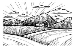 手拉的传染媒介例证-有机农场 草图 免版税库存照片