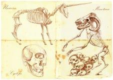 手拉的传染媒介:独角兽,独眼巨人, Minotaur 免版税图库摄影