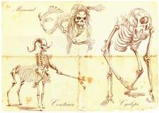 手拉的传染媒介:美人鱼,独眼巨人,名骑手 库存照片