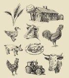 手拉的农场和的动物 皇族释放例证