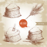 手拉的剪影样式套有整个面粉和麦子束的大袋 库存照片