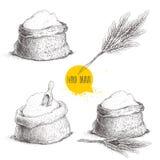 手拉的剪影样式套有整个面粉和麦子束的大袋 图库摄影