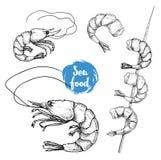 手拉的剪影样式海鲜集合 Shripms,大虾,烤了在竹棍子的虾 库存照片