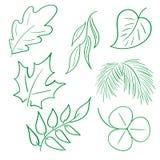 手拉的叶子 免版税库存图片