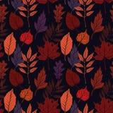 手拉的向量例证 与秋天事假的无缝的样式 库存照片