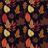 手拉的向量例证 与秋天叶子的无缝的样式 免版税库存照片