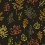 手拉的向量例证 与秋天叶子的无缝的样式 库存照片