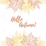 手拉的向量例证 与秋天叶子的背景 为 库存图片