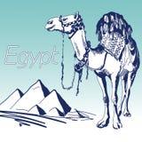 手拉的向量例证 举世闻名的地标系列:埃及,金字塔 免版税库存照片