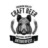 手拉的啤酒象征用狂放的肉猪,公猪,徽章的,商标,菜单盖子,补丁猪模板 免版税库存图片