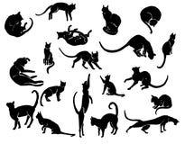 手拉的墨水猫剪影 库存例证
