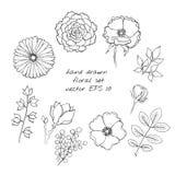 手拉的墨水花卉剪影集合 大丁草,多汁植物,狗玫瑰 图库摄影