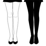 手拉的女性腿 优美的妇女腿剪影  免版税库存照片
