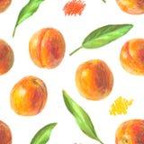 手拉的桃子样式 库存图片