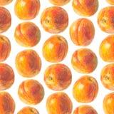 手拉的桃子样式 免版税库存图片