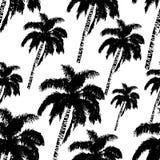 手拉的棕榈树无缝的样式 与热带可可椰子树的异乎寻常的时髦背景 库存照片