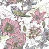 手拉的植物的与鸟的题材无缝的样式 库存例证