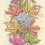 手拉的槭树叶子垂直的无缝的边界 免版税库存图片
