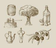 手拉的橄榄油剪影 库存例证